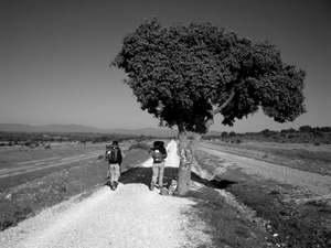 Los caminos de la vida…